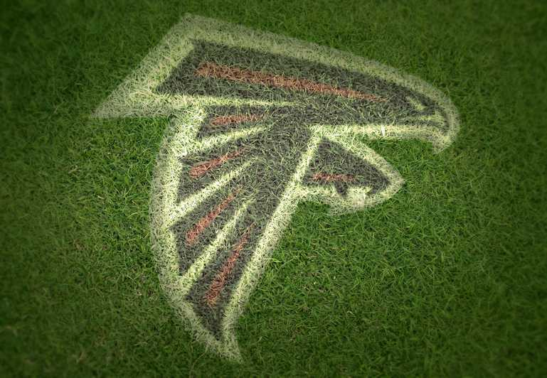 Falcons Grass