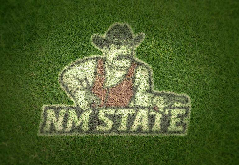 new mexico state aggies grass